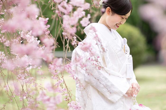 桜と白無垢