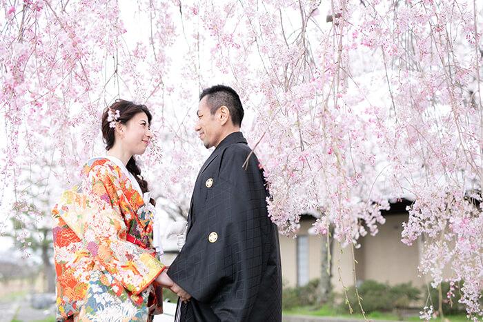 桜の前で手を取り合った和装前撮りポージング
